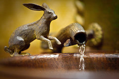 Rabbit Sink